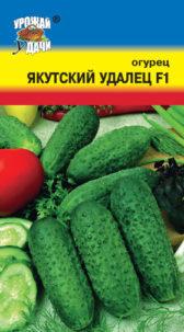 Огурец Якутский удалец F1 /Урожай удачи/